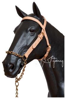 Cabezada para mi caballo blog de piensos silvestre for Cabezadas para caballos