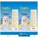 trophy puppy 4kg
