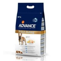Advance Frech Bulldog 3 kg