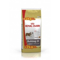 BHN Bulldog Ad 12+2kg