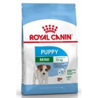 SHN Mini Puppy 8kg