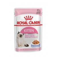 FHN Wet Kitten Instictive In Jelly 85gr (12uds)